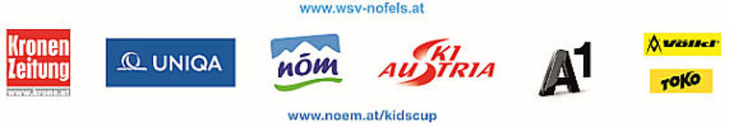 schm sponsor 2015