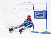 Gausterer rtl1 130315 skizeit