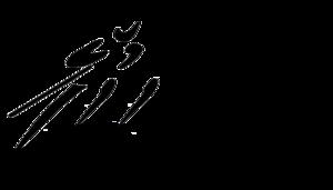 Logo llc laengenfeld