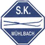 Logo_skm