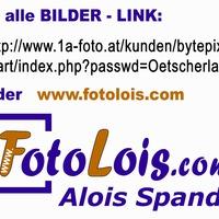 Fotolois_skizeitlink_oetscherlauf