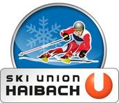 Logo skiunion f rbig