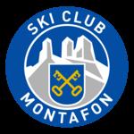 Skm logo 2013 600px