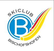 Scb logo 2018