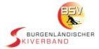 Bsv logo neu schrift klein 140 70
