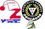 Logo zw kammer